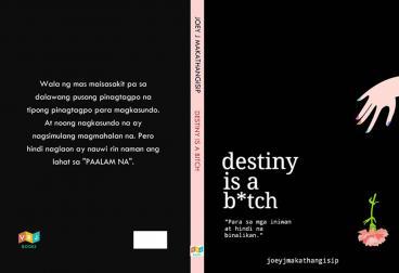 destiny-is-a-bitch
